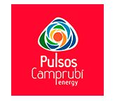 PULSOS ENERGY